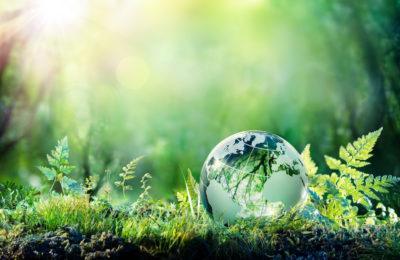 cambio climatico y movilidad sostenible